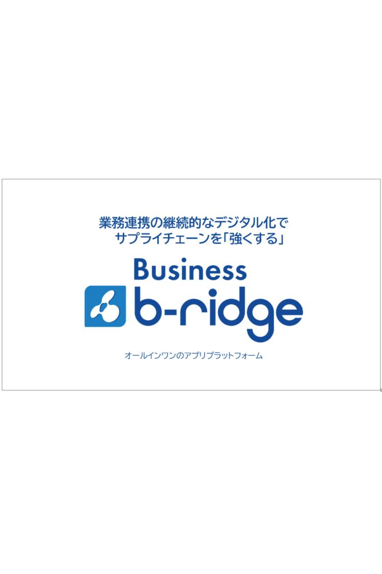 Business b-ridge製品説明資料